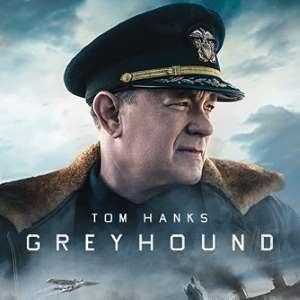 greyhound_square